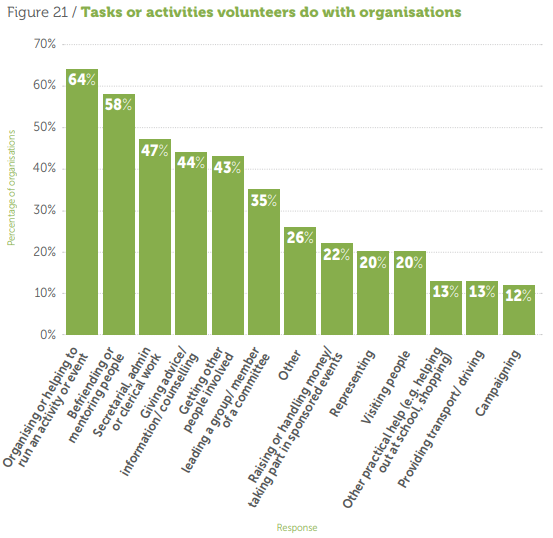 Tasks or activities volunteers do with organisations