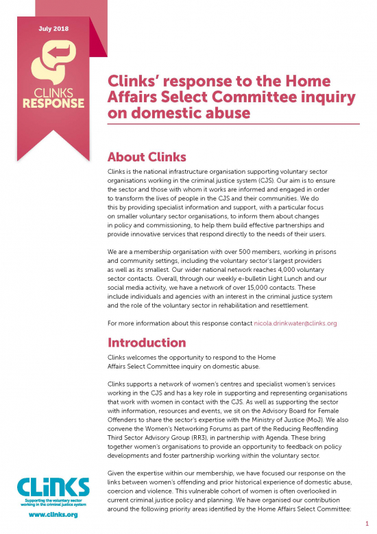 Home Affairs Select Committee inquiry on domestic abuse front cover